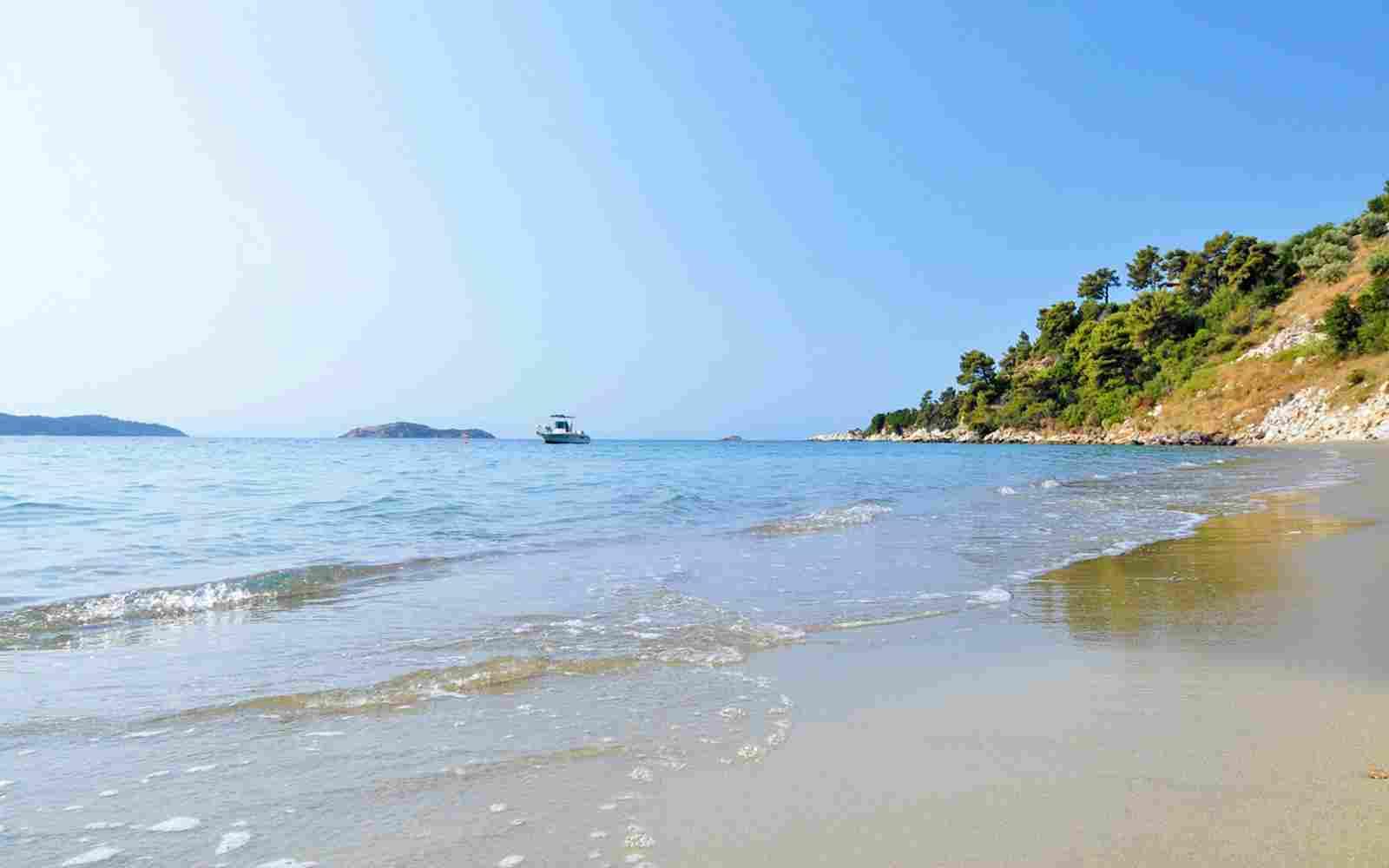http://www.okohotel.co.nz/wp-content/uploads/2016/03/summer-beach-01.jpg